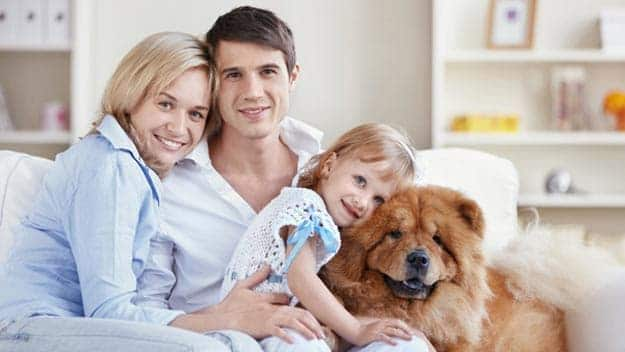 Wills & Trusts dog-young-family Direct Wills
